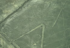 Nazca Lines: The Spider. The Nazca Line geoglyph of the Spider as viewed from the sky stock photo