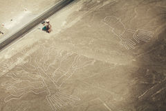 Nazca lines Stock Images