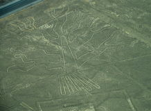 Nazca Lines: The Tree stock image