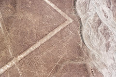 Nazca Lines Whale Stock Images