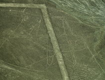 Nazca Lines: The Whale royalty free stock photo