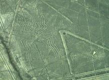 Nazca linie: Pająk fotografia stock