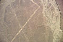 Nazca linie - wieloryb Obrazy Royalty Free
