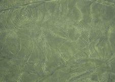 Nazca-Linien: Der Affe Lizenzfreies Stockbild