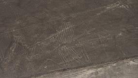Nazca linjer Royaltyfria Bilder