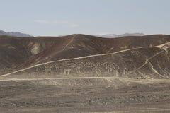 Nazca linjer och peruansk öken Arkivfoto