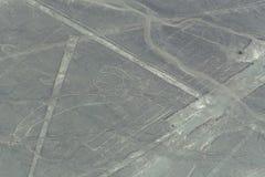 Nazca Wykłada w postaci ścigi Obraz Stock