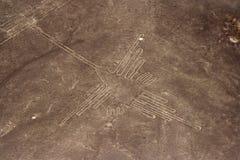 Nazca Zeilen Stockfotografie