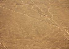 Nazcalijnen - Aap stock afbeelding