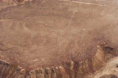 Nazcalijnen en geoglyphs stock afbeeldingen