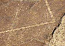 Nazcalijnen - Walvis royalty-vrije stock afbeeldingen