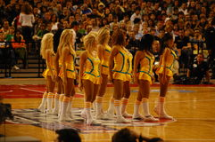 NBA in Europe - cheerleaders. The New Orleans Honeybees cheerleaders in action at the recent NBA match in Barcelona, Spain October 17 2008 Stock Images