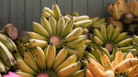 Nbundles зрелых бананов для продажи в азиатских рынках fruits тропическо стоковое фото rf