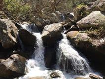 NC的南山国家公园 免版税库存图片