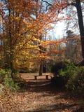 NC的斯隆公园 免版税图库摄影