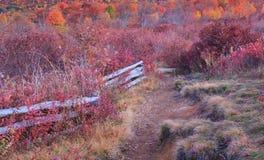 NC ścieżka przy cmentarzy polami w jesieni Obraz Stock