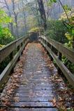 NC Footbridge jesieni Zwyczajny deszcz Fotografia Stock