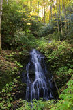 NC Waterfall in Autumn Stock Image