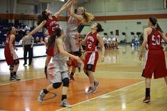 NCAA女子的篮球 库存照片