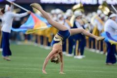 2014 NCAA橄榄球- TCU-WVU 库存照片