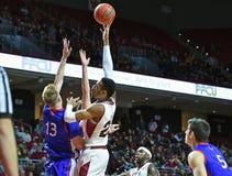 2014 NCAA篮球-人的篮球 库存图片