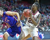 2014 NCAA篮球-人的篮球 库存照片