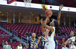 2014 NCAA篮球-女子的篮球 免版税库存图片