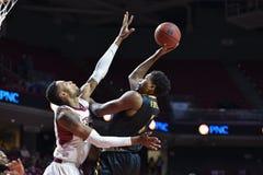 2014 NCAA篮球- Towson @寺庙比赛行动 免版税库存照片