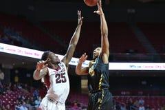 2014 NCAA篮球- Towson @寺庙比赛行动 库存图片