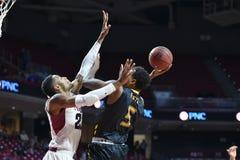 2014 NCAA篮球- Towson @寺庙比赛行动 图库摄影
