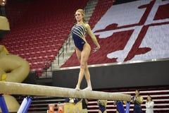 2015 NCAA γυναικεία γυμναστική - WVU Στοκ Φωτογραφίες
