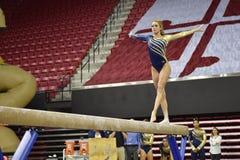 2015 NCAA γυναικεία γυμναστική - WVU Στοκ φωτογραφίες με δικαίωμα ελεύθερης χρήσης