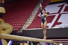2015 NCAA γυναικεία γυμναστική - WVU Στοκ Φωτογραφία