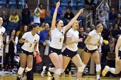 NCAA πετοσφαίριση 2014 - Baylor - WVU Στοκ εικόνες με δικαίωμα ελεύθερης χρήσης