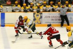 Игра хоккея NCAA Стоковые Изображения RF
