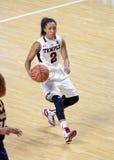 2014 NCAA-basket - kvinnors basket Arkivfoton