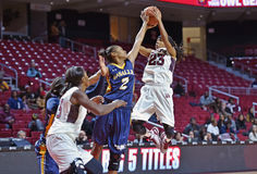 2014 NCAA Basketbal - het Basketbal van Vrouwen Royalty-vrije Stock Afbeelding