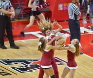 2014 NCAA-Basketball - Beifall/Tanz Stockfotos