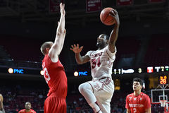 2016 NCAA-Basketball - Houston am Tempel Lizenzfreie Stockbilder