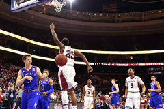 2014 NCAA-Basketball - Kansas am Tempel Stockbilder