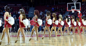 2014 NCAA Basketball - Spirit Squad Stock Image