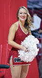2014 NCAA Basketball - Spirit Squad Stock Photography