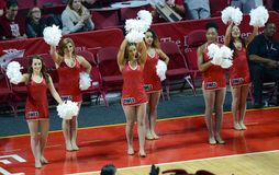 2014 NCAA Basketball - Spirit Squad Royalty Free Stock Images