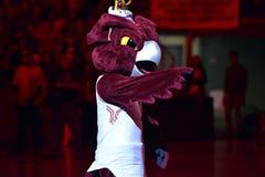 2015 NCAA-Basketball - Tempel-ECU Stockfoto