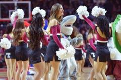 2015 NCAA Basketball - Temple-ECU Stock Photography