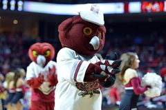 2015 NCAA Basketball - Temple-ECU Royalty Free Stock Images