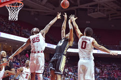 2015 NCAA Basketball - Temple - UCF Royalty Free Stock Photo