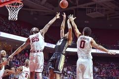 2015 NCAA Basketball - Temple - UCF Royalty Free Stock Photo