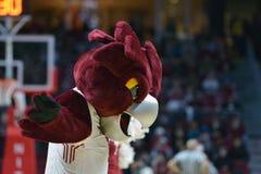 2015 NCAA-Basketball - Viertelfinale-Tempel-La neuer Informationstechnologie tech Stockbild
