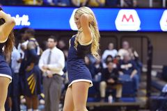 2015 NCAA Basketball - WVU-Oklahoma State. MORGANTOWN, WV - MARCH 7: The West Virginia University dance team performs during the Big 12 Conference college Royalty Free Stock Image